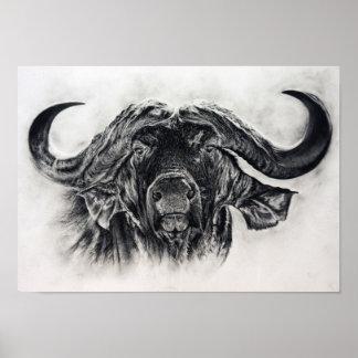 Buffel i kol poster