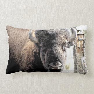Buffel Lumbarkudde