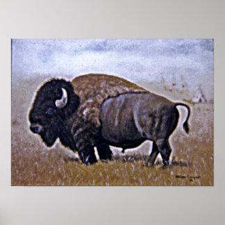 Buffel Poster