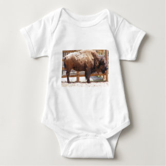 Buffel T-shirts