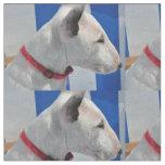 bull-terrier-.png tyg