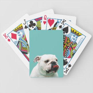 Bulldogg som leker kort kortlek