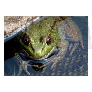 Bullfrog Hälsningskort