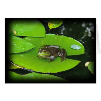 Bullfrog på Lilypads Hälsningskort