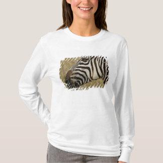 Burchellis sebra, Equusburchellii, Masai Tee Shirt