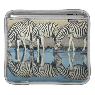 Burchells sebra (Equusburchellien) iPad Sleeve