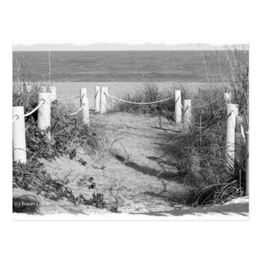 BW Fort Pierce, den Florida stranden går dynen rop Vykort