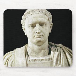 Byst av kejsaren Domitian Musmatta