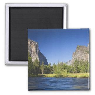 CA Yosemite NP, dalen beskådar med El Capitan, Magnet