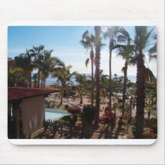 Cabo San Lucas beskådar från mitt fönster Musmatta