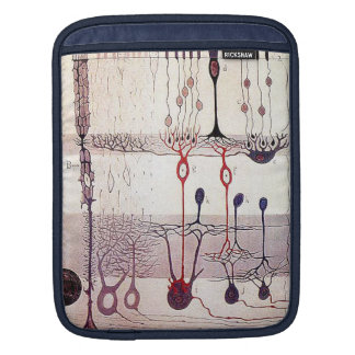cajal iPad och laptop sleeve