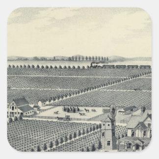 Caledonia vingårdlän, Fresno Fyrkantigt Klistermärke