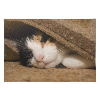 Calico under mattan bordstablett