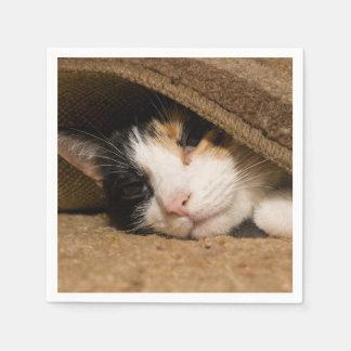 Calico under mattan servett