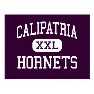 Calipatria - bålgetingar - kick - Calipatria Vykort