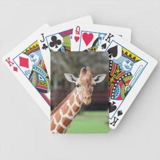 Camelopard (giraff) spelkort