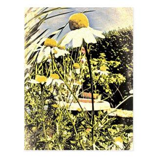 Camomilen blommar vykortet (för antik stil) vykort
