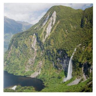 Campbells kungarike, tvivelaktigtt ljud, Fiordland Kakelplatta