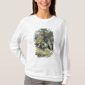 Canonteign Devon T-shirts