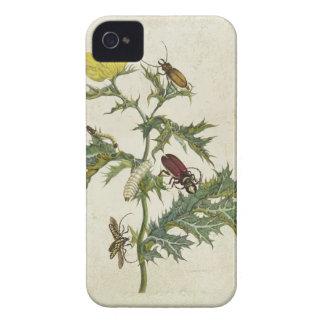 Cardos Spinosus: Skalbaggar och Caterpillars, Case-Mate iPhone 4 Fodral