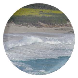 Carmel pekar stranden med vildblommafält tallrik