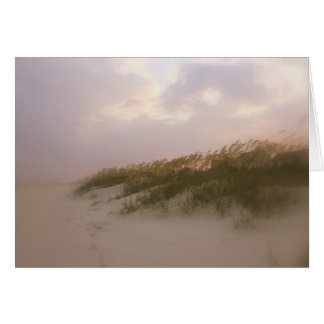 Carolina sanddyner OBS kort
