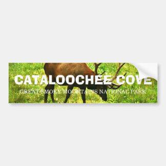 Cataloochee Cove - underbara rökiga berg Bildekaler
