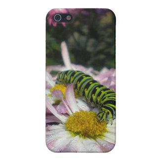 Caterpillar promenad iPhone 5 skydd