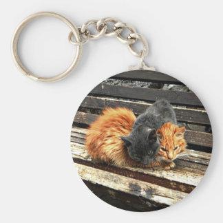 Catnap Cuties Rund Nyckelring