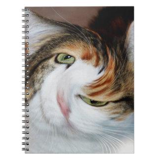 Catnipped katt anteckningsbok