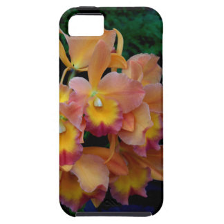 Cattleya Orchids iPhone 5 Case-Mate Skal