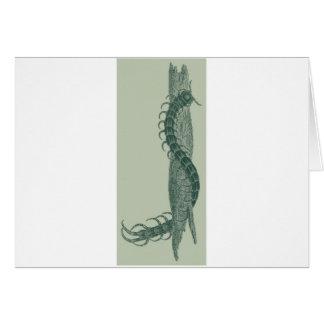 Centipede Hälsningskort