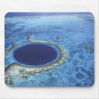 CENTRAL AMERICA Belize, stor korall revar av Musmatta