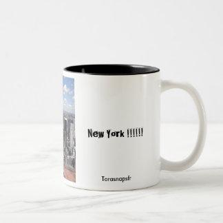 Central Park beskådar Två-Tonad Mugg