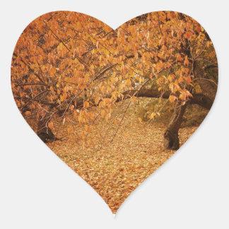Central Park höst - New York City Hjärtformat Klistermärke