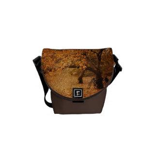 Central Park höst - New York City Messenger Bag