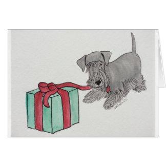 Cesky Terrier med gåva Hälsningskort