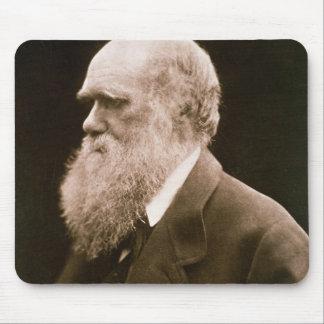 Charles Darwin (1809-82) (fotoet) Musmatta