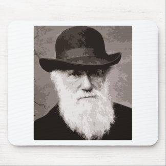 Charles Darwin i 1880, som en gammal gentleman Musmatta