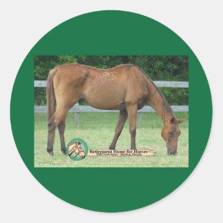 Charlie hästklistermärke runt klistermärke