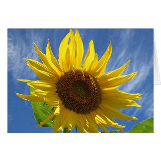 Cheery solros hälsningskort