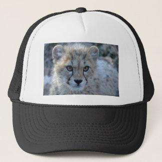 cheetah 4x6 keps