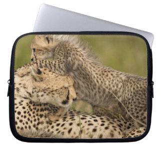 Cheetah Acinonyxjubatus, med ungen i masaien 3 Laptop Sleeve