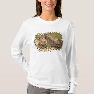 Cheetah Acinonyxjubatus, med ungen i masaien 3 Tee Shirts