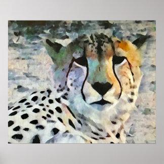 Cheetah i afrika poster