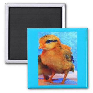 Chick-En-Dee-Ljus påsk