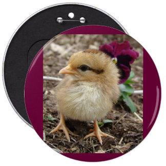 Chick-En-Dee-Ljus påsk Knapp Med Nål