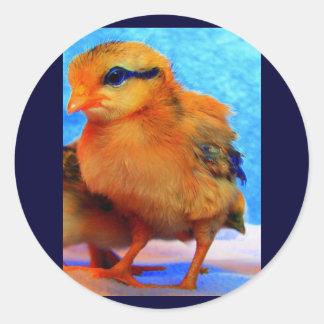 Chick-En-Dee-Ljus påsk Runt Klistermärke
