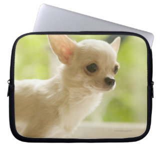 Chihuahua Laptop Fodral