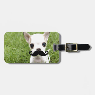 Chihuahua med rolig mustasch i trädgård bagagebricka